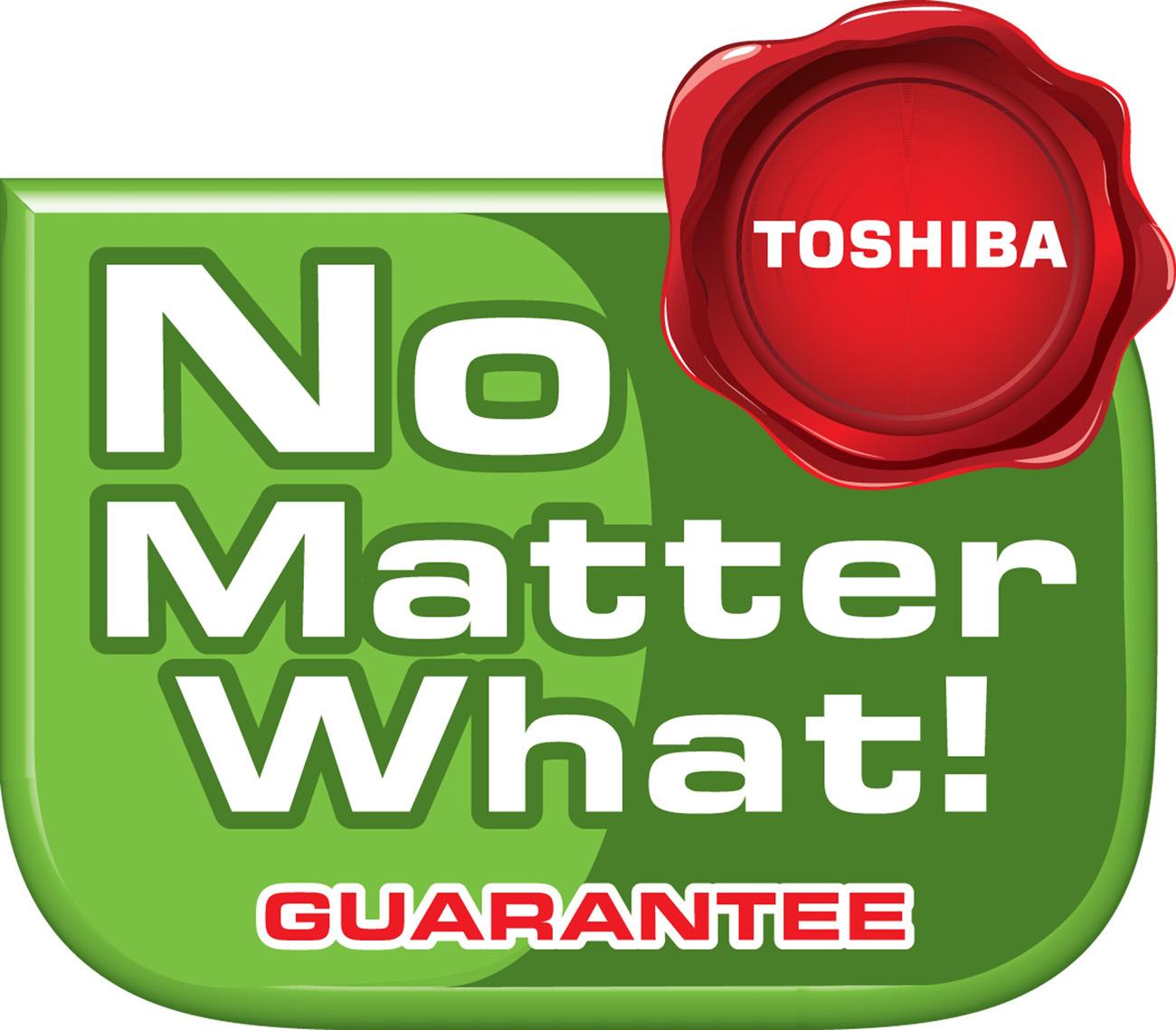 63323-Toshiba_NMWG_logo